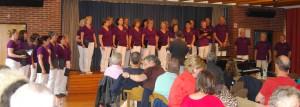 Sommer im Hof 2014 - Vocalix Böblingen